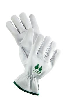 Gloves on White Back