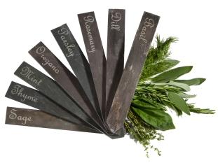 Fir tree herb stakes lr